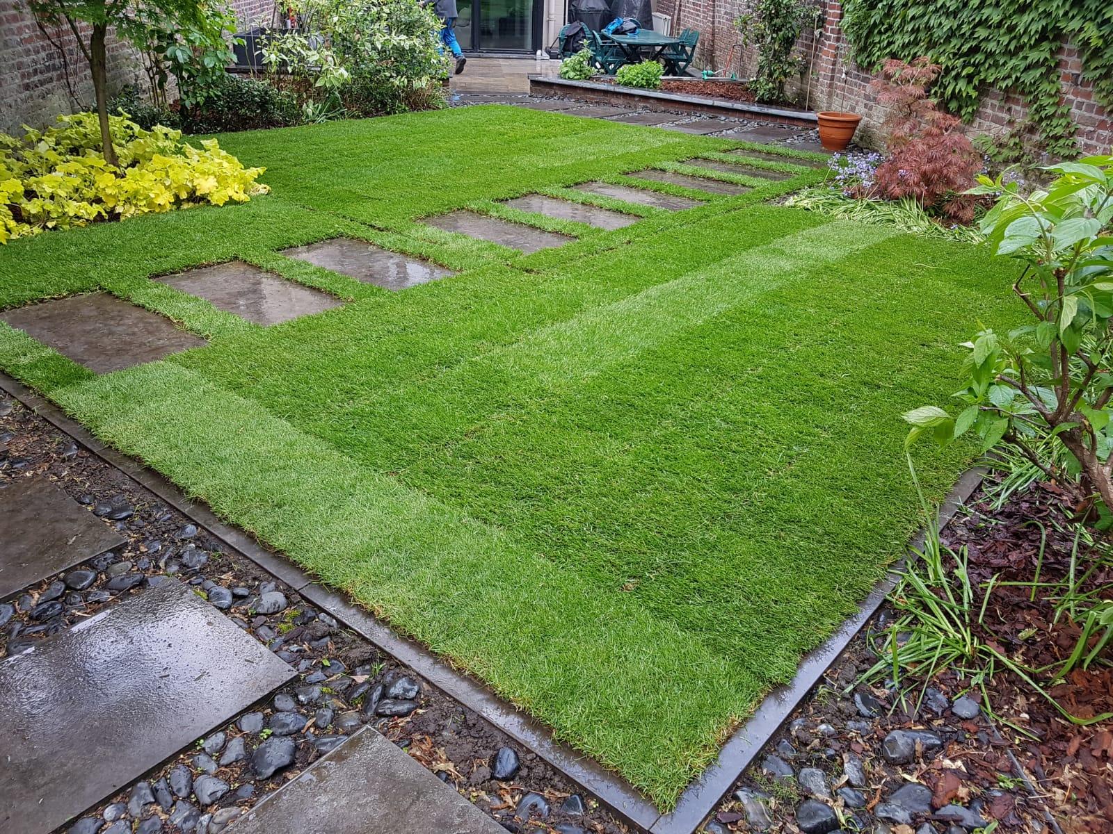 refaire r parer ou r arranger votre pelouse pose de. Black Bedroom Furniture Sets. Home Design Ideas